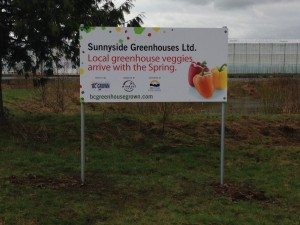 Coloured Horizontal Sunnyside Greenhouses Ltd. Sign Street View